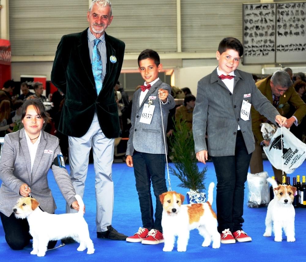 XXXVII Exposición Internacional Canina De Guipuzcoa (IRÚN)